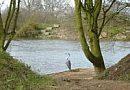 Dingle Fishery