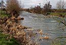 River Avon - Wick Grange