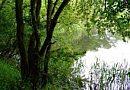 Brickyard Pond