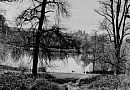 Ampthill Reservoir Coarse Fishery