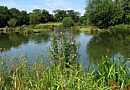 Chapel Road Lake