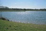 Ashmere Trout Fishery