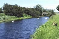 Royal Military Canal - Appledore to Kenardington