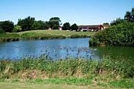 Walrow Ponds
