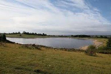 Thornton Steward Reservoir - Fisharound.net