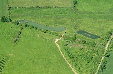 Meadow Lake - Fisharound.net