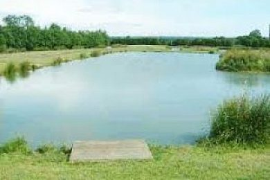 Heronbrook Fisheries - Fisharound.net