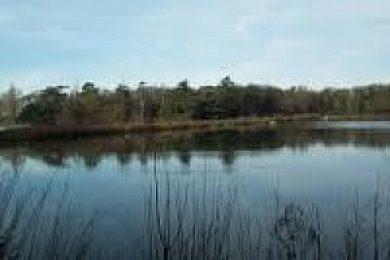 Revesby Estate - Fisharound.net