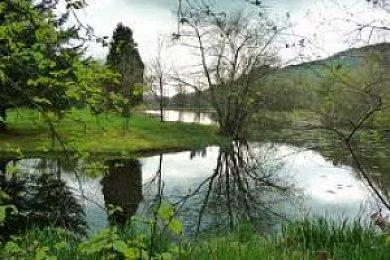 Llanllawddog Lake - Fisharound.net