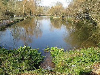 Spring Ponds - Fisharound.net