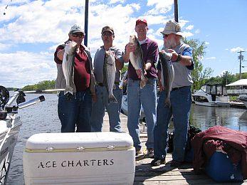 Ace Charters - Fisharound.net