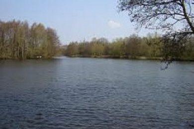 Swangey Lakes - Fisharound.net