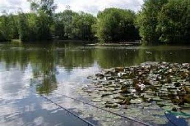 Alderson Lakes - Fisharound.net