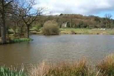 Barr Hill Bottom Pools - Fisharound.net