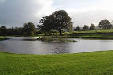Grange Springs Fishing Lakes - Fisharound.net