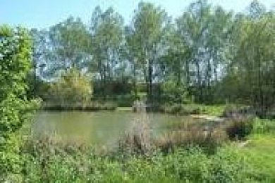 Akenham Lakes - Fisharound.net