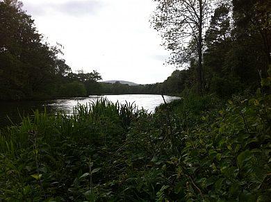 Walcot Hall Lakes - Fisharound.net