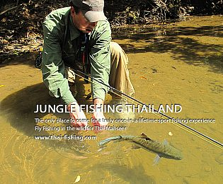 Jungle Fishing in Thailand - Fisharound.net