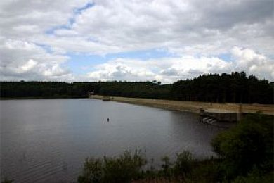 Fewston and Swinsty Reservoirs - Fisharound.net