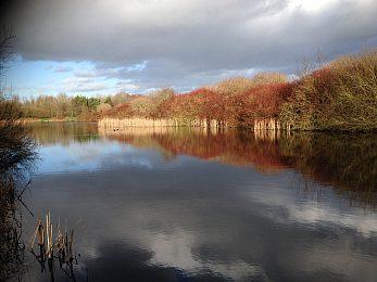 Meadow Fishery - Fisharound.net