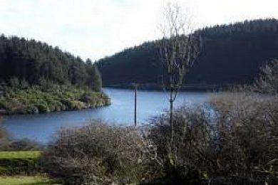 Rosebush Reservoir - Fisharound.net