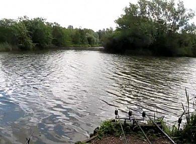 Ivel Valley Fisheries - Fisharound.net