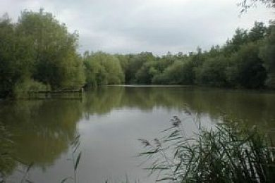 Rookery Meadow Carp Fishery - Fisharound.net