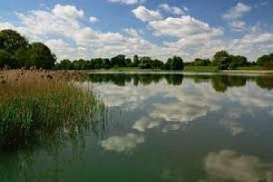 Bure Valley Lakes - Fisharound.net