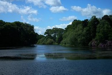 Nostell Upper Lake - Fisharound.net