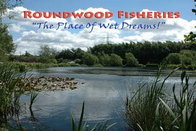 Roundwood Ponds - Fisharound.net