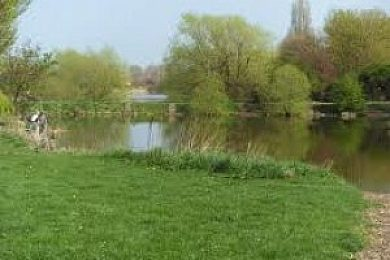 Billingham Angling Club - Fisharound.net