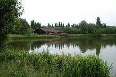 Great Linford Lakes - Fisharound.net