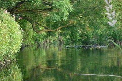 River Glaze Dunham Massey Angling Club - Fisharound.net