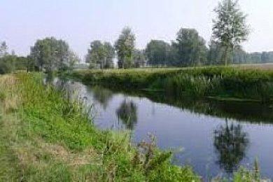 River Chelmer - Fisharound.net