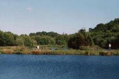 Sarn Mill Fisheries - Fisharound.net