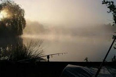 Stanninghall Lakes - Fisharound.net