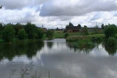 Elm Tree Farm Fishery - Fi