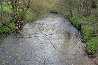 River Birkin Dunham Massey Angling Club - Fisharound.net