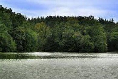 Longleat Lakes & Shearwater - Fisharound.net