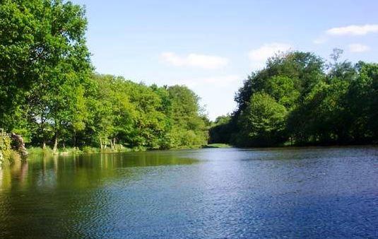 Vaux lake saint ellier du maine france fish around for Public fishing lakes near me