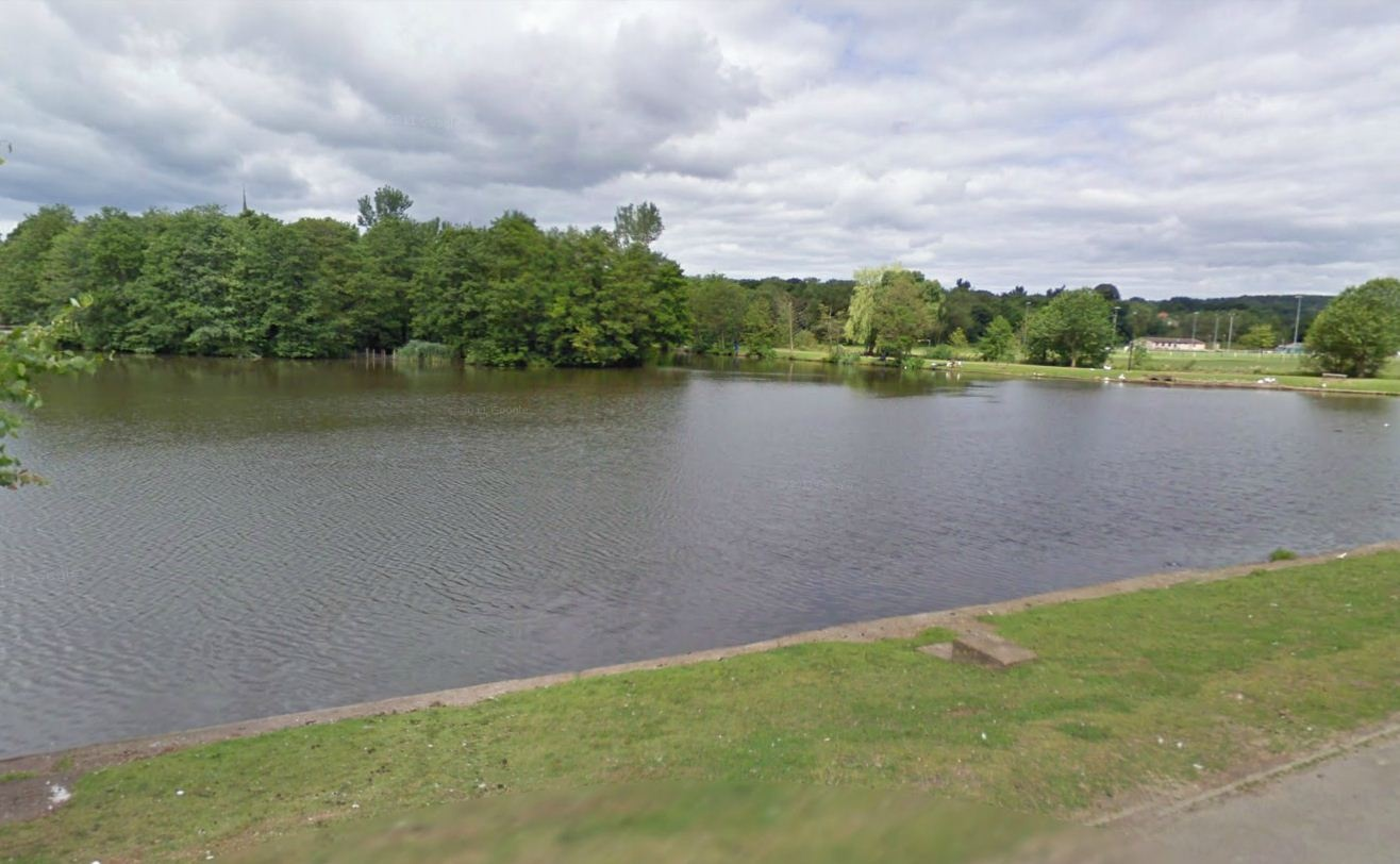 Lydney United Kingdom  City new picture : Lydney Lake, Lydney, United Kingdom Fish Around
