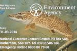 License dodgers cost fisheries in England £1.5m