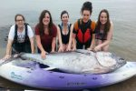 Million pound fish - Rare bluefin tuna found on a Cornish beach