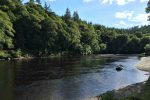 Catches of salmon on the River Tay drop to lowest levels for 50 years