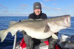 British fishermen land two of the biggest cod ever caught