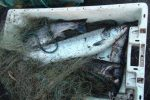 Two men have been handed fines for poaching fish with gill nets on the River Tyne