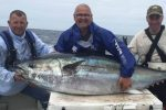 Angler hooks rare monster 300lb tuna off the Welsh coast