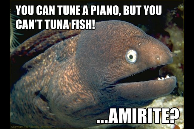 Bad joke eel fishing meme gallery fish around for Funny fishing songs